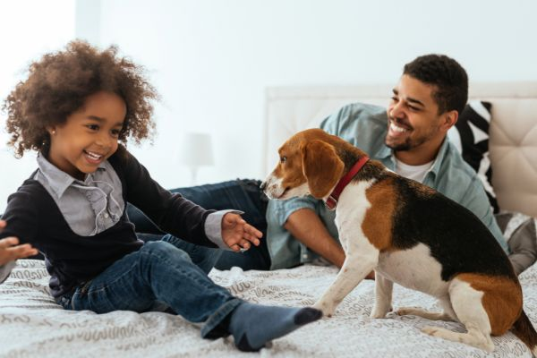 Man and young girl play with puppy on a bed